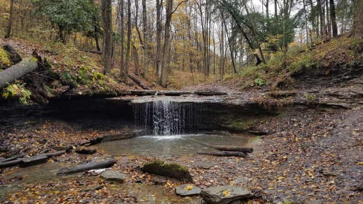 Settlers Cabin Waterfall