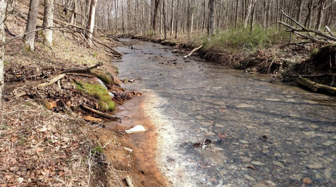 SETTLERS CABIN MINE POLLUTION CLEAN-UP PLANNING