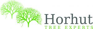 Horhut Tree Experts