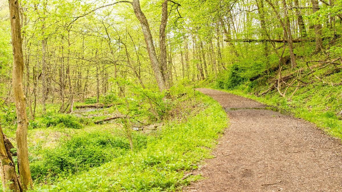 Montour Trail South Park