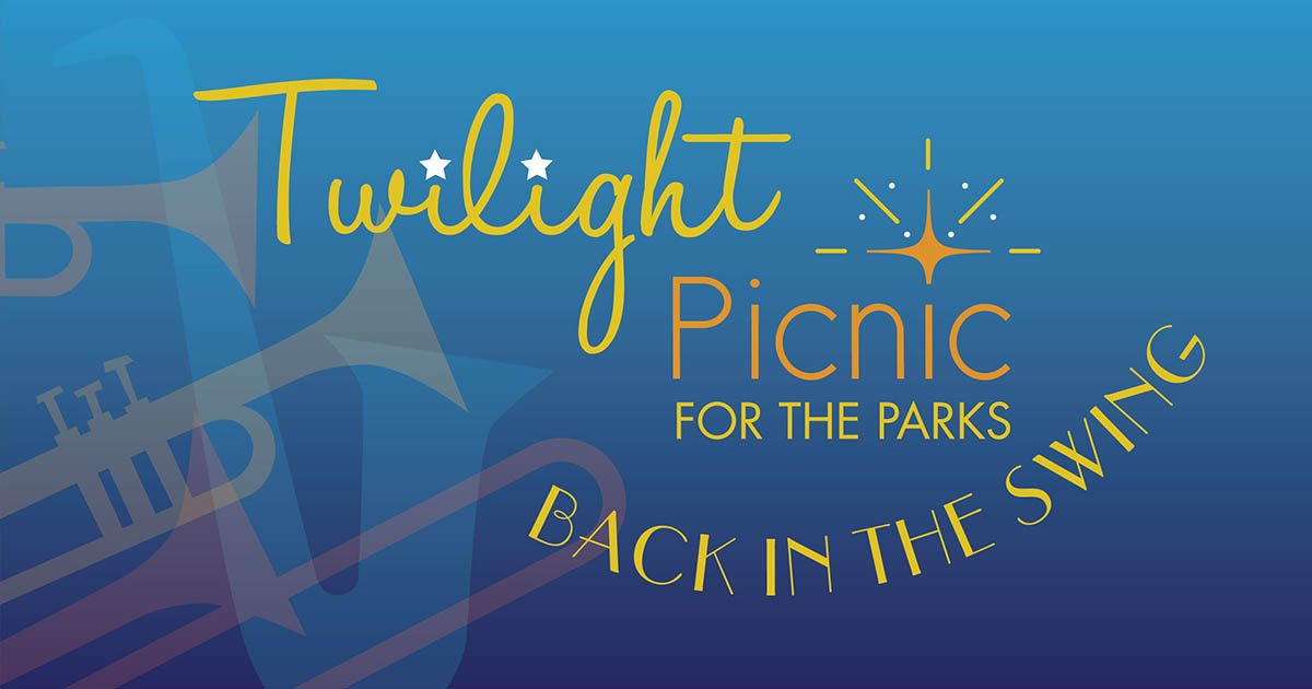 Twilight Picnic Back in the Swing